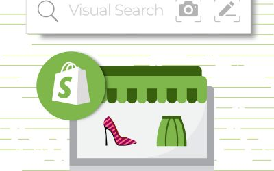 Find out what your clients are looking for installing Shopify Visual Search app